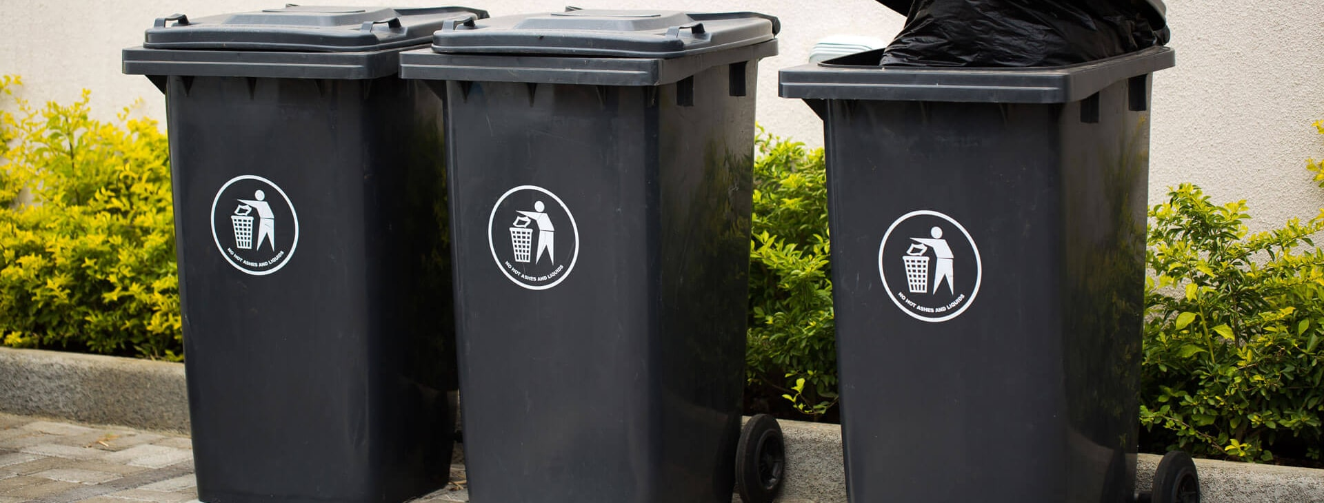 three plastic garbage cans on a concrete slab in front of bushes for the durable goods market